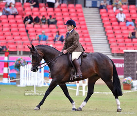 Melise Tuma-Webb and 'M-Jay Willow' placed third in the Lady's Show Hunter Galloway class.
