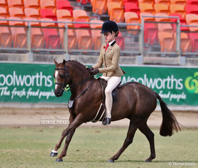 The Benton & Benton-Hall Family entry 'Owendale Valencia' was ridden by Elizabeth Taylor to take second in the Open Show Hunter Pony, over 12hh & n.e. 12.2hh class.