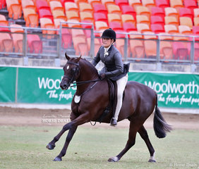 Rebecca Gerber's 'Loriot Breaking Dawn' was declared the Champion Large Show Hunter Pony,  judged by David Ross.