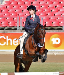 Photographed during the judging of the Working Hunter, over 12.2hh & n.e. 14hh is Rhiana Connors' entry 'Kar-Trice Kamal'.