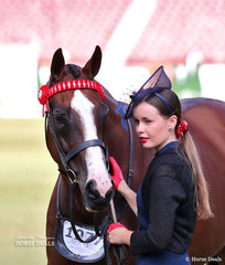 'Madam Butterfly' and Alana Smith placed fourth in  the Led Thoroughbred Mare, 4yrs & over, n.e. 16hh class.