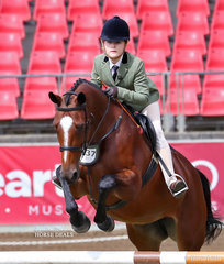 Pictured competing in the Working Hunter, over 15hh class Charlie Welsh's entry 'Mains Matilda'.