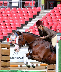 Laura Northover and 'NV Hudson' placed third in the Working Hunter over 15hh class.