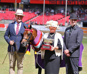 Supreme Champion Australian Saddle Pony exhibit 'Rosedale Matilda', exhibited by PAE Group, led by Mark Lilley, pictured with the perpetual trophy donated by ASPA presented by Jane Nelson, and judge Jason McRae