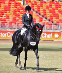 'Afrika' exhibited by Tamicca Clottu, pictured competing in the Crane Trophy.