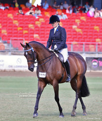 Working out in the Crane Trophy is Dianne Phillips' entry 'La Bella', ridden by Joanne Parry.