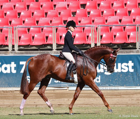Second placegetter in both the Open Hack, over 16hh & n.e. 16.2hh class and the Lady's Hack class is Trina and Trinette Crawford's 'Seventy Seven'.