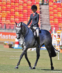 Toni Ambrose and Courtney Larard's entry 'Set In Diamonds' placed seventh in the Open Hack, over 15.2hh & n.e. 16hh class.