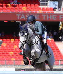 Competing in the Jumping Contest Table A the Mt Australia Investments entry 'Upperclass', ridden by Amelia Douglass.