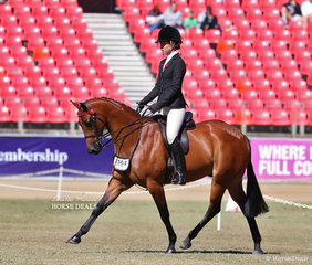 Competitor in the Lady's Galloway class 'Hannaley Sensation'. Exhibited by Johnson and Johnson-McNeil Family, ridden by Emma Donnelly.
