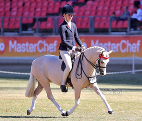 Working out for a chance at Champion Small Pony of the Show is Jessica Callus riding 'Picturesque Prince'. They won the Open Pony, n.e. 11.2hh class.