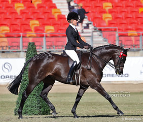 Winner of the Lady's Galloway class 'Royalwood On Broadway' exhibited by the Morelli Family and Joanne Prestwidge, ridden by Jess Stones.