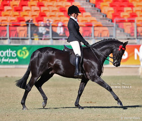 Working out on Champion day is the winner of the Open Lightweight Galloway, over 14hh & n.e. 14.2hh class 'Daisy Patch Soul Star' and Chanele Hunter-Cook.