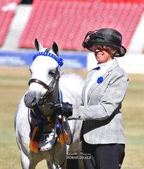 Reserve Champion Australian Pony Mare was Kim and Michael Rath's 'Amaranda Jazz'.