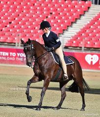 Ella Hunt riding 'Jaylock Heidi' in the Pony Club Rider 13 & under 15 years class.