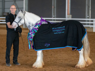This little filly mixed it with the best of the best, being award the Grand Supreme Pure Bred of the Show. With her handler Tim Patton, Milford Pines Chrystal Symphony certainly did the Vella and Patton families proud.