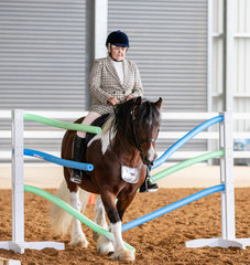 Eager to give anything a try, Watermark the Puppet Master was awarded with Reserve Champion Ridden Versatility Part Bred