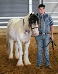 It was smiles all round at this brand new Gypsy Cob feature show. Another upcoming colt, Merseysyde Mayhem and his handler Tyson Layton, took everything in their stride and were a great example of the breed's temperament