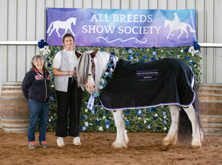 Owner Jackie Allen entrusted handler Madeline Deaner with Watermark Amazing Grace for Day 1 and it certainly paid off! The team came home with very well deserved Supreme Pure Gypsy Cob, against a very strong field.