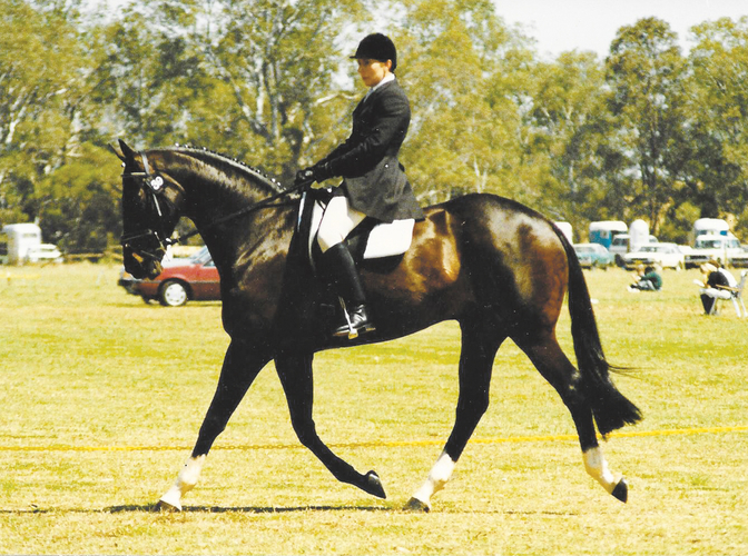 Foxy Bob, Dressage Championships 1988. <br> Photo: Athlete in Action.