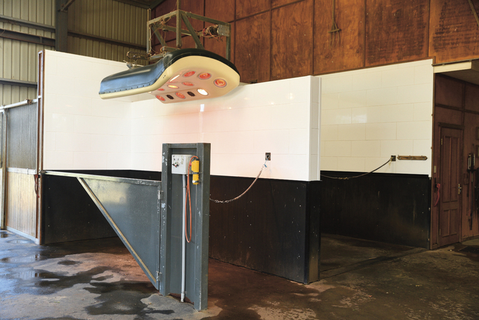 """The rubber lined wash bay and solarium. """"Sometimes we put them in the solarium before we ride them to warm up their backs and they love going in there to dry off after work."""""""