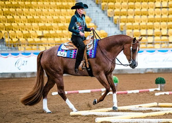 Brooke Caswell & Gotta Love That in the Novice Amateur Trail.