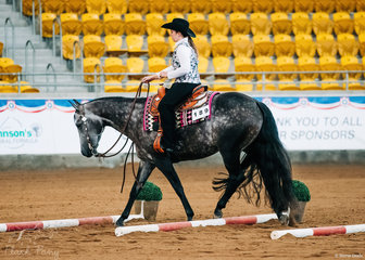 GJC Huntin For Dreams, ridden by Stacey Thomas, in the Novice Amateur Trail.