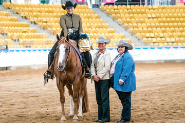 SQ Cee Ima Smoochin owned & shown by The Gillard family, won the Novice Amateur Western Pleasure.