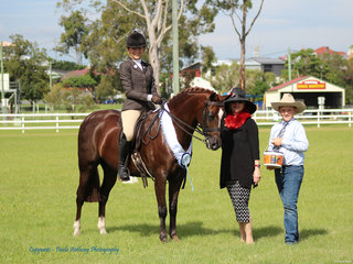 Supreme Hunter Hack Daisy Lane Huntsman exhibited by Taylah Hore with Judge Leonie Walsh and steward Sabastion Lucas