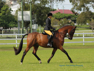 Champion Lady Rider Nina Kate Lucas