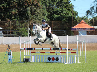 Tom Everson get a clear round in the Jumping
