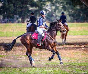 'Viewmont Lisa' - Owned by Lindy Young and ridden by Ella Manning - Winner of the Equestrian South Australian EVA 65