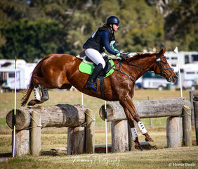 Completing her first CCN1* and finishing in the placings - Sophia Gerstlauer and 'Kalinga Nora'.
