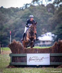 Isabel Houghton and 'Yoicks Baltimore' safely over the Naracoorte Hotel Brush to finish her course and secure 1st place in the Bull Bris EVA95. Isabel also picked up a win in the Naracoorte and Lucindale Council EVA80 Div 2 riding 'Yoinks Kimikain'.