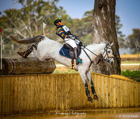 Megan Jones and her grey mare 'LRE Barina' make easy work of the entry onto the 'Lake Stuart' water complex.