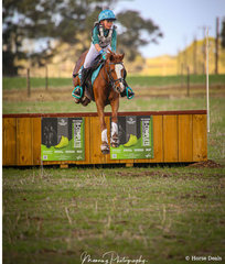 Young Rider - Mia Ozolins and her little pony 'Rivington Zaza' over the Banana Feeds Box in the Naracoorte-Lucindale Council EVA80.