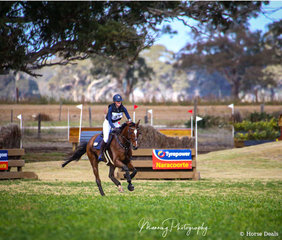 Chelsea Clarke and 'Highfield Chiquitas Chico' making the best of the excellent going to finish 1st in the Evolution Animal Care Young Rider CCN1*.