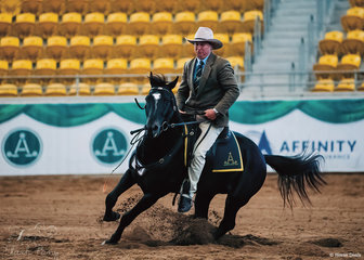 Barry Moore and Starwaltz Cool Justice -HSH won the 2021 J & GR Lyons Supreme Working Horse of the Show.