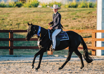 Brittany Hetherington & Wilstock Poppy claimed 1st place in the Hack Mare 4yo.