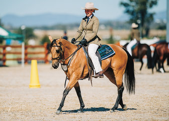 Kate Clancy rode Seligmans Squirrel for Texas Star Performance Horses.