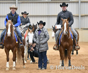 Mick Taylor and David Norbury,  Co-Champions of Novice Horse Open L1