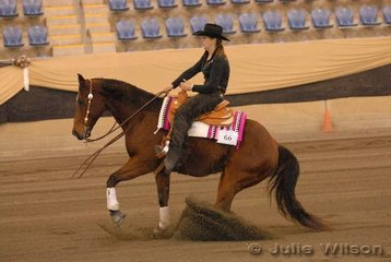 Janice Barr rode Cehel Roc N Roll to sixth place in the Novice Horse Non Pro scoring 137.5.