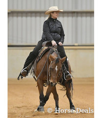 Chrissy Watson riding BR Little Miss Curly Cat.