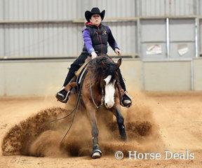 Kate Elliott riding QP Gun Dun It.