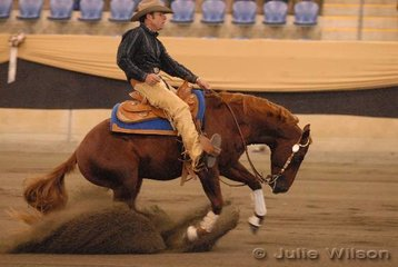 Second place in the Open Futurity 1st Go-Round, the popular and successful, Warren Backhouse from Kandanga in Queensland riding Carol Sargeant's, RBH Wizz Kid, scoring 142.