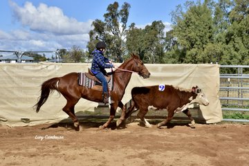Kalvin Dargin had a successful competition, winning the #10 Beginners Youth Ranch Hand
