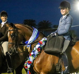 Champ Large Hunter -Riley Kent and Power Play