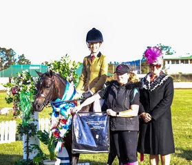Champion Small Hunter Pony -  Clare Fedrick -Berwyn Swallow