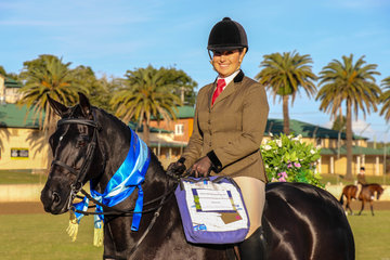 Kirsty Harper Purcell Clemson Tuxedo Runner Up Hunter galloway