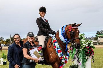 KS Bellevue owned by Kim Taunton ridden by Mikayla van Kampen -Large hack champion
